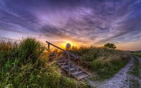Картинка дорога, закат, лестница