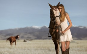 Картинка поле, лошадь, Кира, Mark Crislip