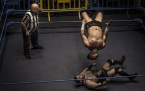 Картинка спорт, борьба, ринг