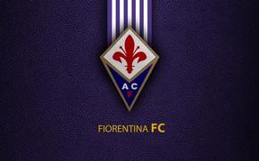 Картинка wallpaper, sport, logo, football, Fiorentina, Italian Seria A