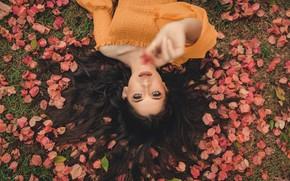 Картинка трава, взгляд, листья, девушка, брюнетка, блузка, плечо