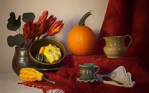 Картинка красный, еда, тыква, натюрморт, овощи, платок