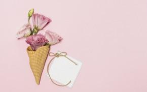 Картинка цветы, фон, розовый, букет, розовые, эустома, вафельный рожок