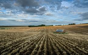 Картинка поле, природа, дом, пашня