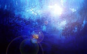 Картинка вода, отражение, дождь