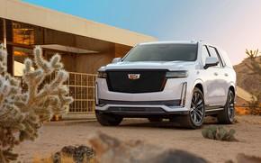 Картинка Cadillac, Escalade, Sport, Platinum, 2020