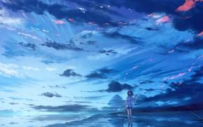 Картинка пляж, девушка, облака, ветер