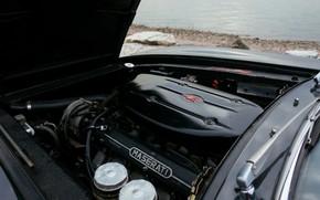 Картинка двигатель, чёрный, Maserati, 1969, родстер, спайдер, Ghibli Spider
