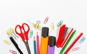 Картинка карандаши, скрепки, канцтовары, степлер
