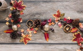 Картинка осень, листья, фон, дерево, colorful, орехи, шишки, wood, background, autumn, leaves, осенние, maple