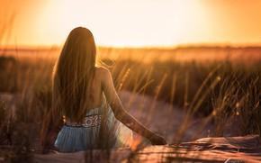 Картинка девушка, солнце, волосы, спина, Antonio A Conde