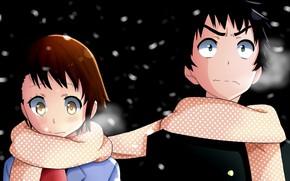 Картинка девушка, ночь, романтика, аниме, шарф, арт, парень, двое, Nisekoi, Притворная любовь