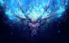Картинка зелень, взгляд, животное, волшебство, листва, олень, рога, magic, лучи света, animal, look, greenery, deer, foliage, …