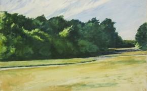 Картинка 1962, watercolors, Edward Hopper, Mass of Trees at Eastham
