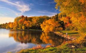 Картинка деревья, отражение, берег, рыбалка, рыбак, мужчина, водоем, золотая осень
