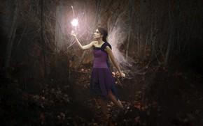 Картинка девушка, огонь, крылья