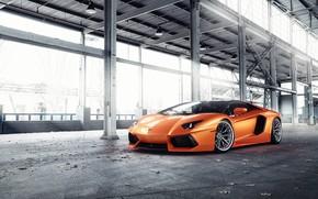 Картинка Lamborghini, Orange, Predator, Aventador, VAG, Sight