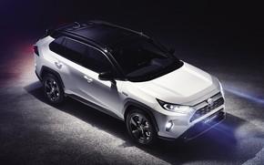 Картинка Toyota, Hybrid, RAV4, 2019, Toyota RAV4 Hybrid