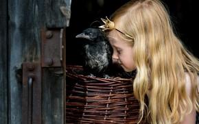 Картинка фон, птица, девочка