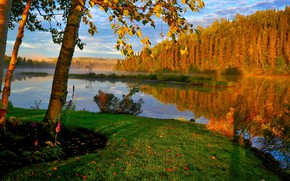 Картинка осень, деревья, пейзаж, природа, туман, озеро, Канада, берёзы, леса, берега, Квебек