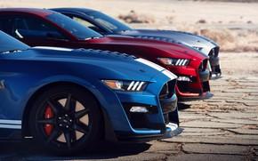 Картинка машины, купе, спорткар, Ford Mustang Shelby GT500
