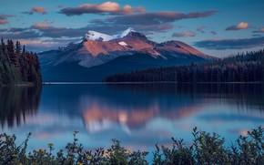 Картинка лес, небо, горы, озеро, отражение, скалы, берег, растительность, вечер, ели, сумерки, водоем, водная гладь