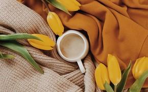 Картинка цветы, тепло, кофе, чашка, тюльпаны, ткань, чашка кофе