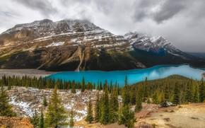 Картинка лес, небо, деревья, горы, тучи, озеро, камни, скалы, Канада, панорама, Альберта, Banff National Park, Alberta, …