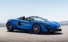 Обои McLaren, Spider, 570S, Worldwide