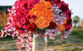 Картинка розы, букет, орхидеи