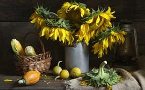 Картинка осень, подсолнухи, цветы, стиль, ретро, темный фон, стол, фон, доски, лампа, зерна, букет, кукуруза, желтые, ...