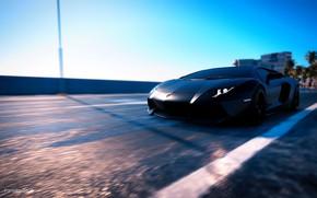 Картинка игры, автомобиль, ламборгини, ламборгини авентадор, black edition, Lamborgini Aventador, The Crew 2