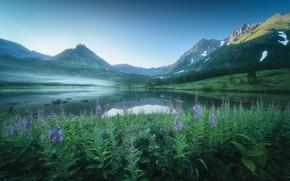Картинка пейзаж, цветы, горы, природа, туман, озеро, вулкан, долина, травы, Камчатка, Оборотов Алексей, Алексей Оборотов, Вачкажец, …