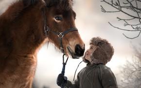 Картинка настроение, конь, мальчик