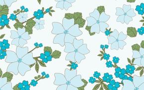 Картинка белый, цветы, фон, голубые