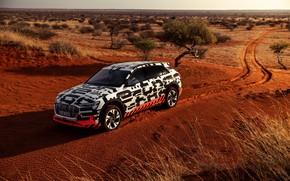 Картинка Audi, растительность, пустыня, 2018, E-Tron Prototype