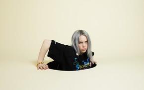 Картинка блондинка, певица, серые волосы, люк, singer, Billie Eilish, Билли Айлиш