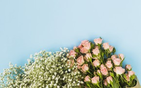 Картинка цветы, фон, голубой, розы, букет, pink, flowers, roses
