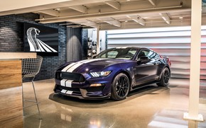 Обои Mustang, Ford, Shelby, GT350, 2019