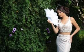 Картинка цветы, поза, куст, веер, Camila