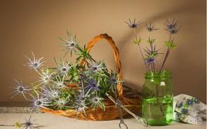 Картинка цветы, букет, ваза, натюрморт
