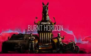 Картинка Art, спецназ, special forces, Gridlock, Mozzie, operation burnt horizon, Rainbow six siege, SASR