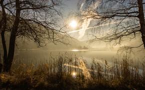 Картинка осень, небо, трава, солнце, облака, свет, деревья, горы, ветки, природа, туман, озеро, блики, рассвет, холмы, …