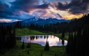 Картинка лес, деревья, пейзаж, горы, тучи, природа, озеро, США, заповедник, Национальный парк, Mount Rainier, Маунт-Рейнир, Tipsoo …