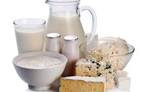 Картинка молоко, творог, сметана, молочные продукты