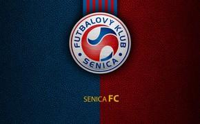 Картинка wallpaper, sport, logo, football, Senica
