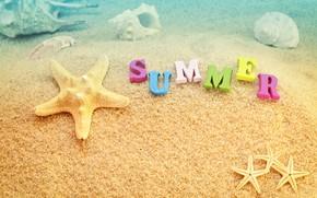 Картинка песок, море, пляж, лето, отдых, ракушки, summer, beach, каникулы, sea, sand, vacation, starfish, seashels