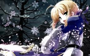 Картинка взгляд, девушка, снежинки, меч, сейбер, Судьба ночь схватки, Fate / Stay Night