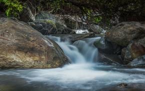 Картинка лес, река, камни, поток
