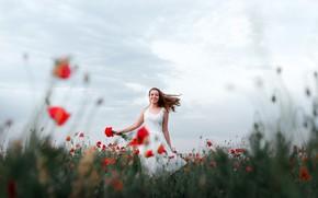 Картинка поле, лето, девушка, цветы, поза, маки, платье, Ларина Юлия